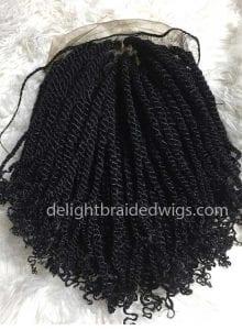 kinky-braided-wigs2