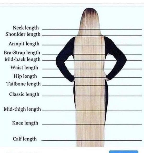 braided-wig-length-chart-delightbraidedwigs